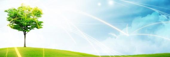 Tree-of-Life-Website-Banner-